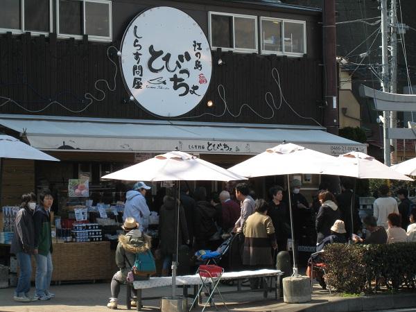 【江の島】しらす問屋 とびっちょ|しらす料理